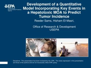 Development of a Quantitative Model Incorporating Key Events in a Hepatotoxic MOA to Predict Tumor Incidence