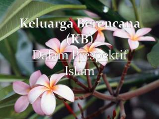 Keluarga Berencana  (KB) Dalam Prespektif Islam