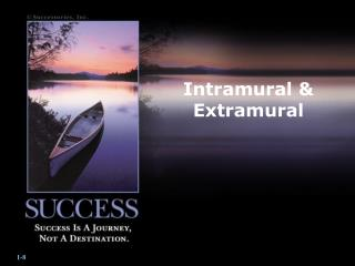 Intramural & Extramural