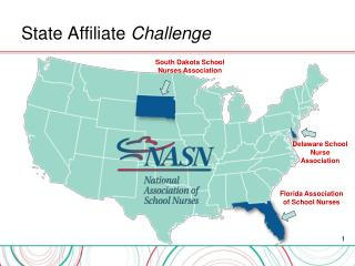 State Affiliate  Challenge