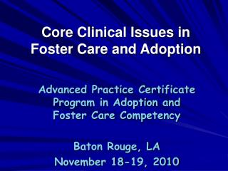 Core Clinical Issues in Foster Care and Adoption