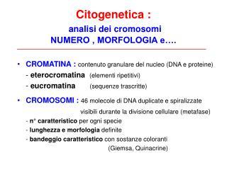Citogenetica : analisi dei cromosomi  NUMERO , MORFOLOGIA e….