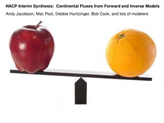 NACP Interim Synthesis:  Continental Fluxes from Forward and Inverse Models