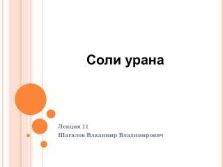 Лекция  11 Шагалов Владимир Владимирович