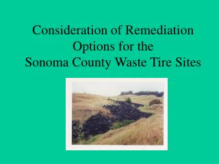 Consideration of Remediation Options for the  Sonoma County Waste Tire Sites