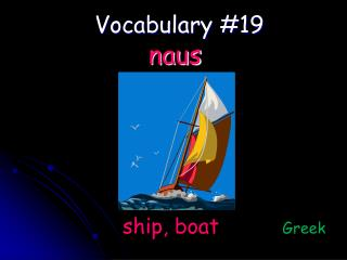 Vocabulary #19