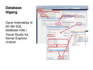 Database tilgang