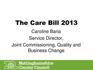 The Care Bill 2013