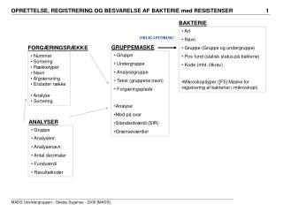Art  Navn  Gruppe (Gruppe og undergruppe)  Pos fund (statisk status på bakterie)