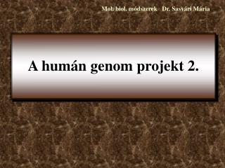 A humán genom projekt 2.