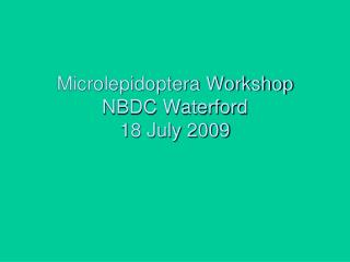 Microlepidoptera Workshop NBDC Waterford 18 July 2009