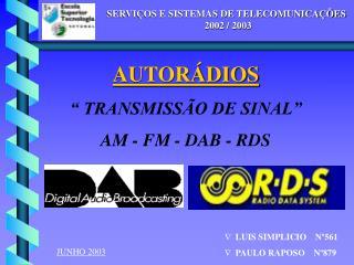 SERVIÇOS E SISTEMAS DE TELECOMUNICAÇÕES            2002 / 2003