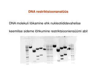 DNA restriktsioonanalüüs