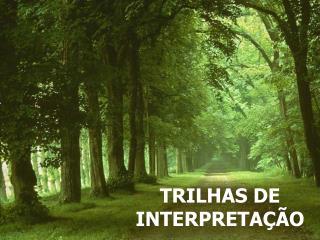 TRILHAS DE  INTERPRETAÇÃO