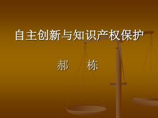 自主创新与知识产权保护