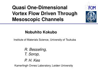 Quasi One-Dimensional Vortex Flow Driven Through Mesoscopic Channels