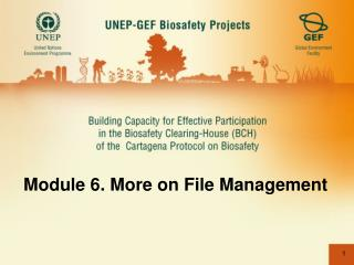 Module 6. More on File Management