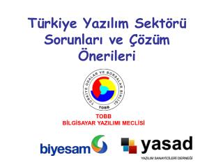 Türkiye Yazılım Sektörü  Sorunları ve Çözüm Önerileri