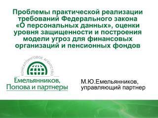 М.Ю.Емельянников , управляющий партнер