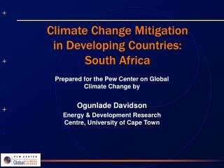 Climate Change Mitigation in Developing Countries: South Africa