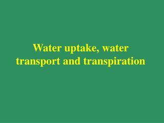 Water uptake, water transport and transpiration