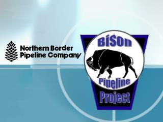 The Bison Pipeline  Project