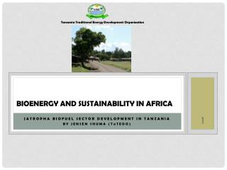 BIOENERGY AND SUSTAINABILITY IN AFRICA