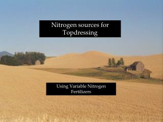 Nitrogen sources for Topdressing