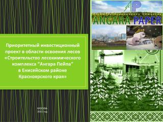 Приоритетный инвестиционный проект в области освоения лесов