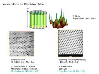 Vortex-Gitter in der Shubnikov-Phase