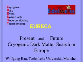 Present    and      Future    Cryogenic Dark Matter Search in Europe