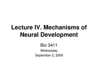 Lecture IV. Mechanisms of Neural Development