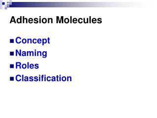 Adhesion Molecules