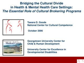 Bridging the Cultural Divide  in Health & Mental Health Care Settings: