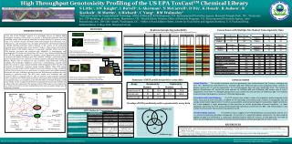 High Throughput Genotoxicity Profiling of the US EPA ToxCast TM  Chemical Library