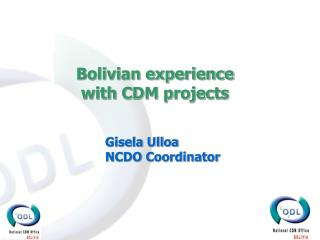 Bolivian experience with CDM projects