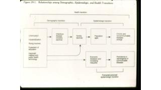 Terms: Epidemiologic Transition