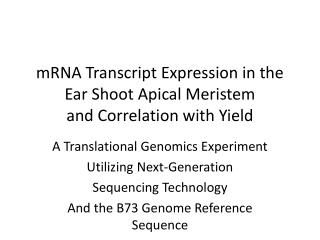 mRNA Transcript Expression in the Ear Shoot Apical Meristem and Correlation with Yield