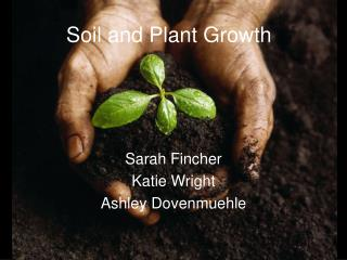 Soil and Plant Growth