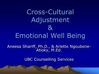 Cross-Cultural Adjustment  & Emotional Well Being