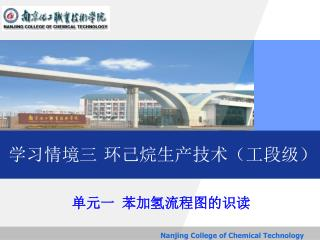 Nanjing College of Chemical Technology