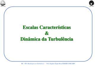 Escalas Características & Dinâmica da Turbulência