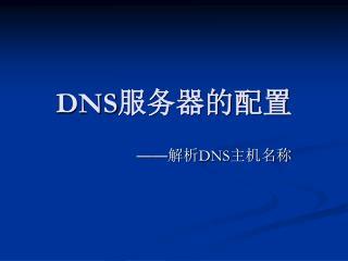 DNS 服务器的配置