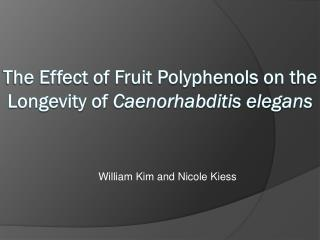 The Effect of Fruit  Polyphenols  on the  Longevity  of Caenorhabditis elegans