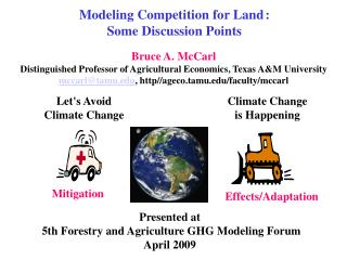 Modeling Competition for Land :  Some Discussion Points