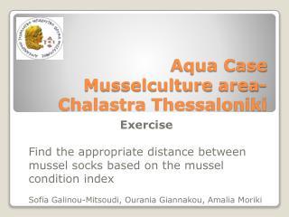 Aqua Case  Musselculture  area- Chalastra  Thessaloniki