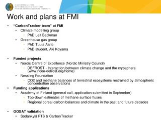 Work and plans at FMI