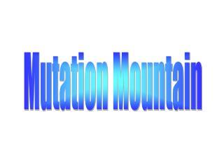 Mutation Mountain