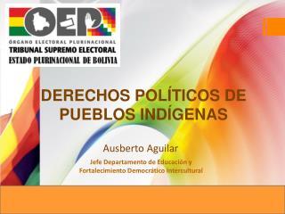 DERECHOS POLÍTICOS DE PUEBLOS INDÍGENAS