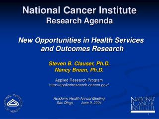 National Cancer Institute Research Agenda